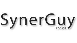 Consultant référencement et SEO – Synerguy